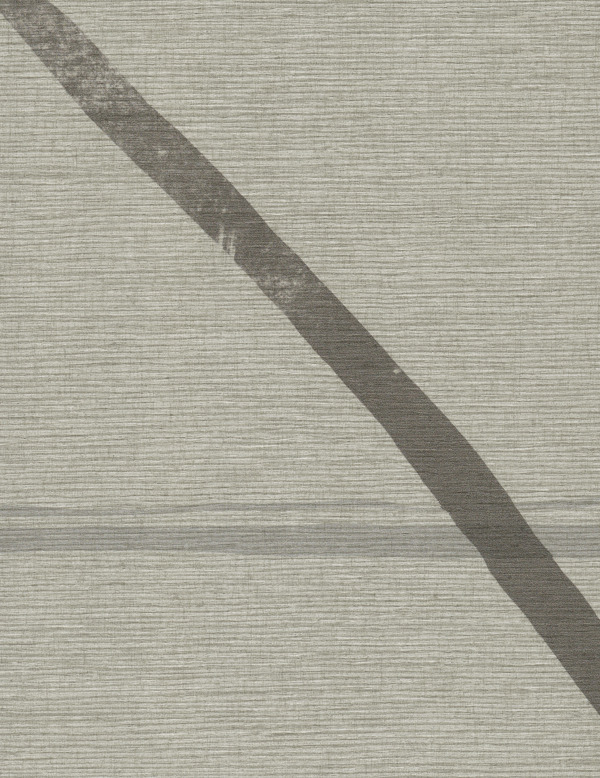 Vinyl Wall Covering Design Gallery Viva La Art Ebb and Flow Outside the Lines