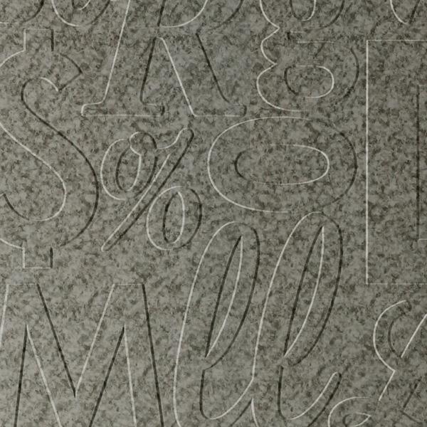 Dimensional Panels Dimension Walls Lingual Galvanized