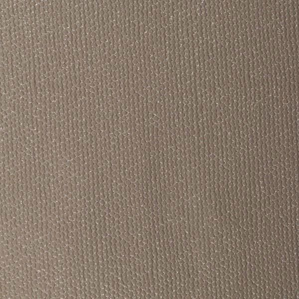 Vinyl Wall Covering Jonathan Mark Designs Twinkle Silver Spurs