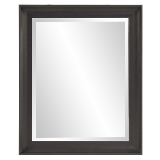 Traditional Traditional Parker Black Rectangle Mirror