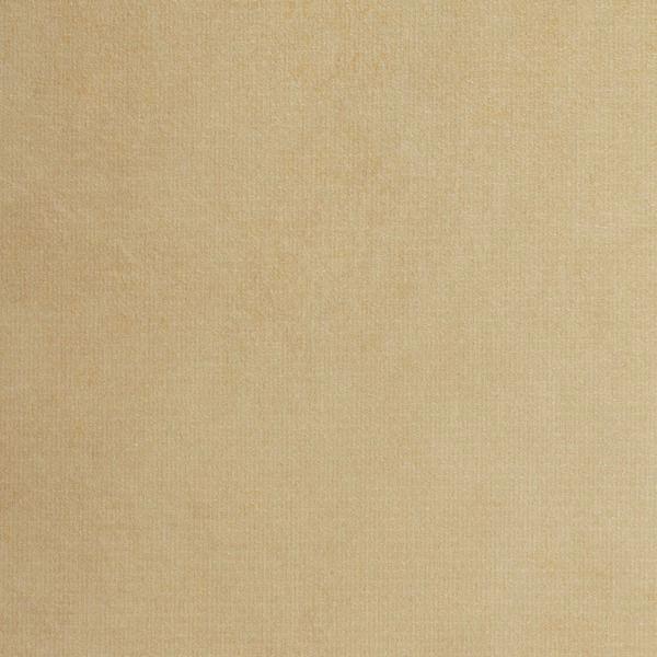 Vinyl Wall Covering In Demand In Demand 7