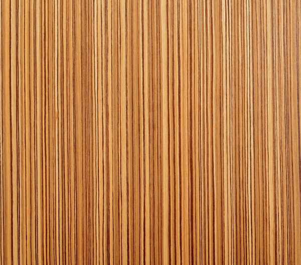 Specialty Wallcovering Unique Effects Woodland QTD ZEBRAWOOD