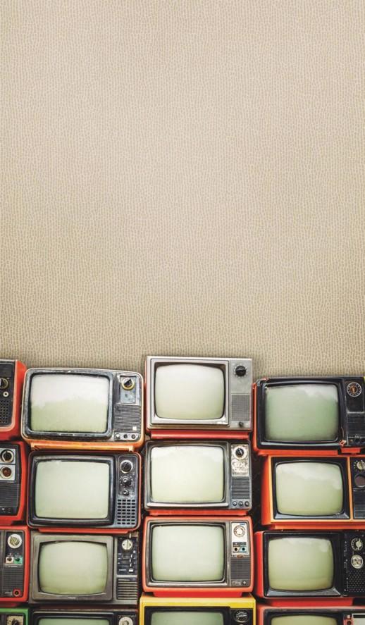 Vinyl Wall Covering Design Gallery Viva La Art Fine-Tuned Lace Room Scene